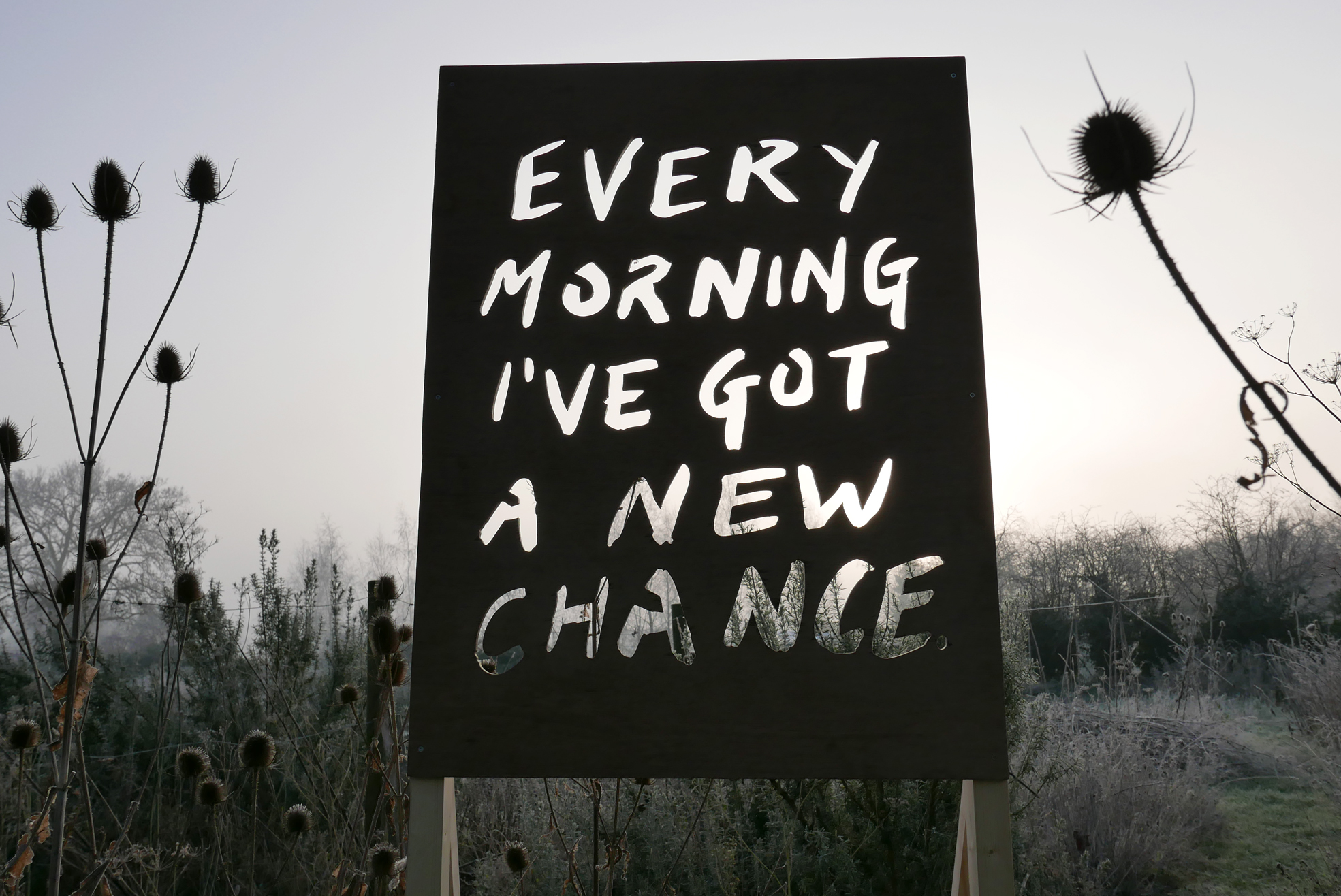 Every Morning I've Got A New Chance